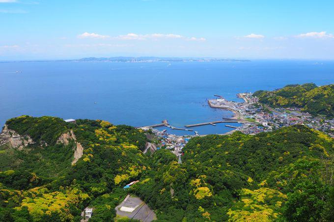 山頂展望台からの眺めは絶景