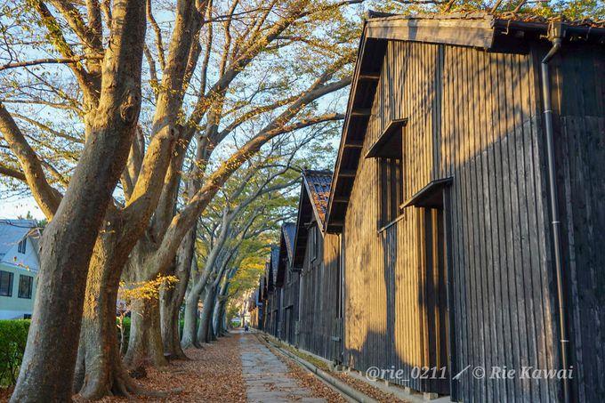 酒田といえばここ!雰囲気たっぷりの「山居倉庫」と絶景夕陽スポット「日和山公園」