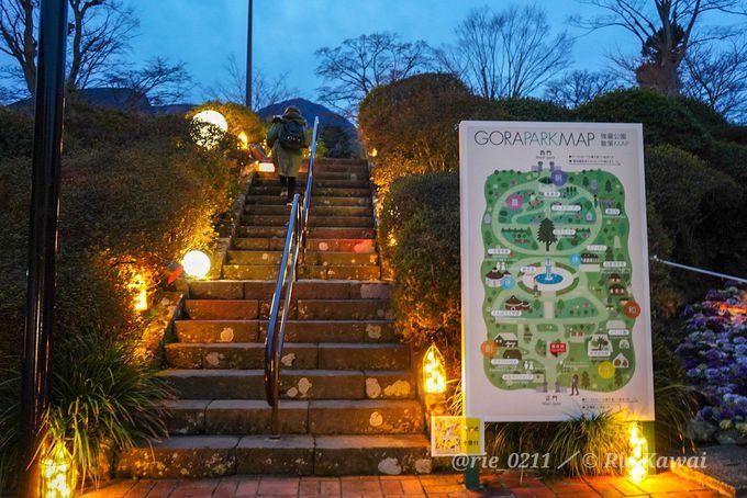 箱根強羅公園のイルミネーションが期間限定で開催