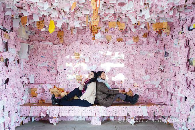 写真を撮ると幸福が訪れる!?キュートなピンク色の世界