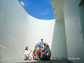 新宿にある「草間彌生美術館」でアートな世界に浸ろう