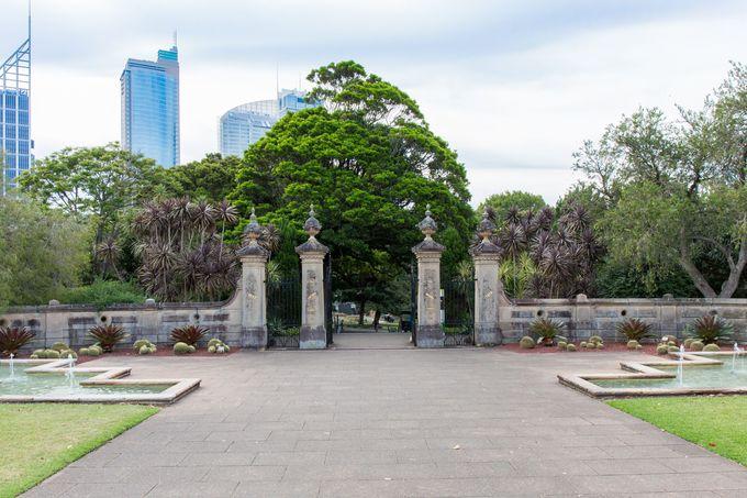 ハーバー・ビューの広大な美しい植物園