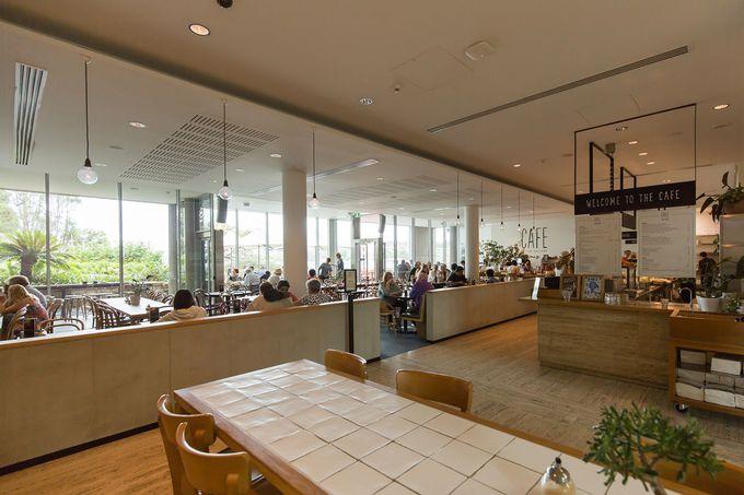 アート鑑賞の後は素敵なカフェやレストランへ
