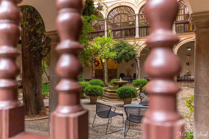 溜息が出るほど美しい中庭(パティオ)