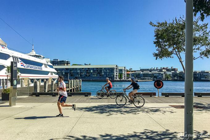 シドニーハーバーを見渡す絶景散歩