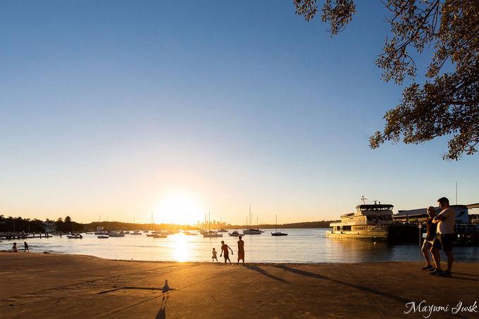 シドニー湾を眺めながら絶景ランチ