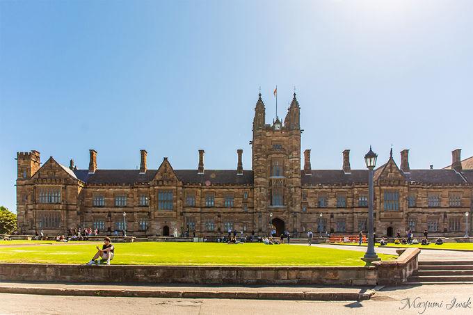 3.歴史建築物とのコントラスト「シドニー大学(University of Sydney)」