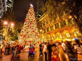 真夏のシドニーで楽しむ「クリスマス・イルミネーション」5選