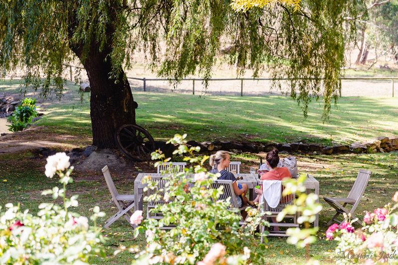 オーストラリア有数のワイン産地・アデレードヒルズでワイナリー巡り