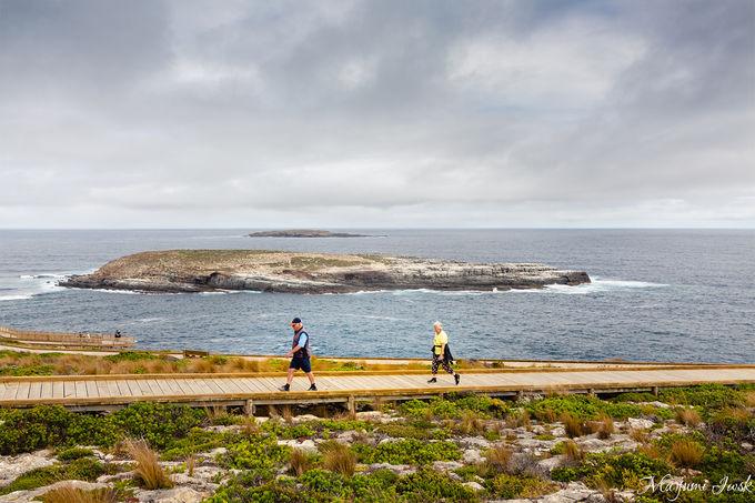1. 「アドミラルズ・アーチ」で南極海の荒々しさを感じる
