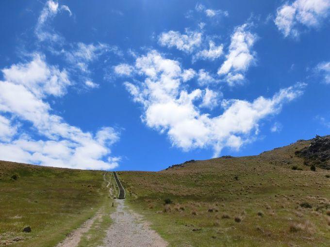 4.Mt.John山頂にあるアストロカフェ