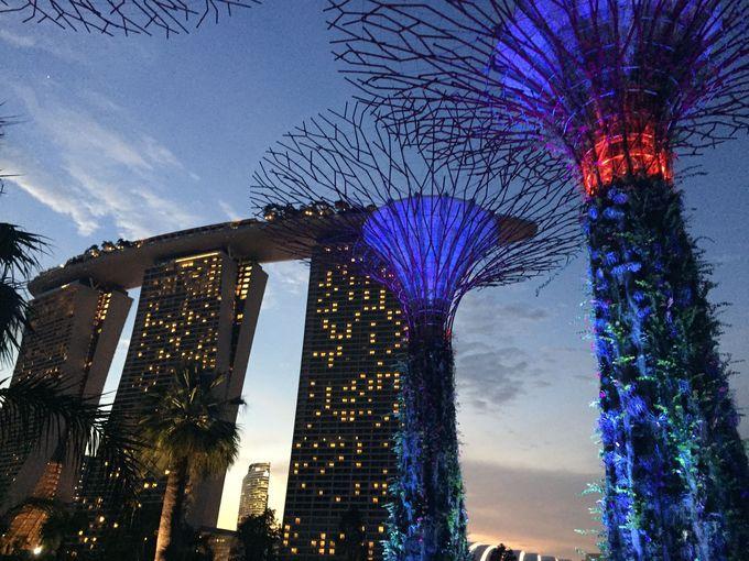 3.シンガポール旅行のルートは?