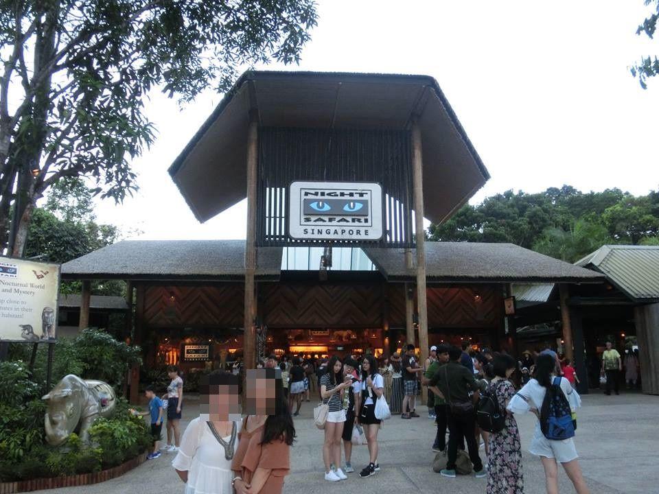 夜のみ営業の動物園、ナイトサファリ