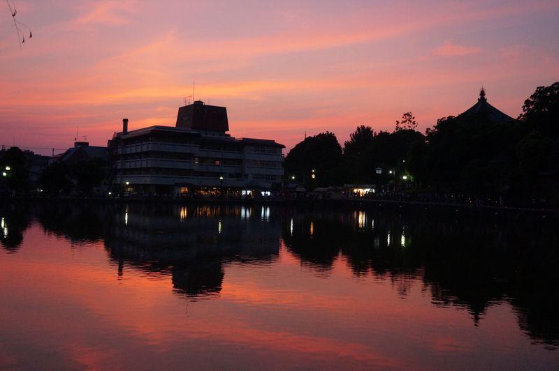 これぞ奈良。猿沢池の景観はただただ癒される