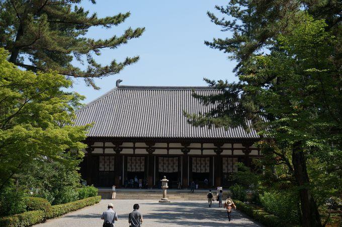 金堂の雄大な大屋根と丸みを帯びた柱は、参拝者を天平へと誘う