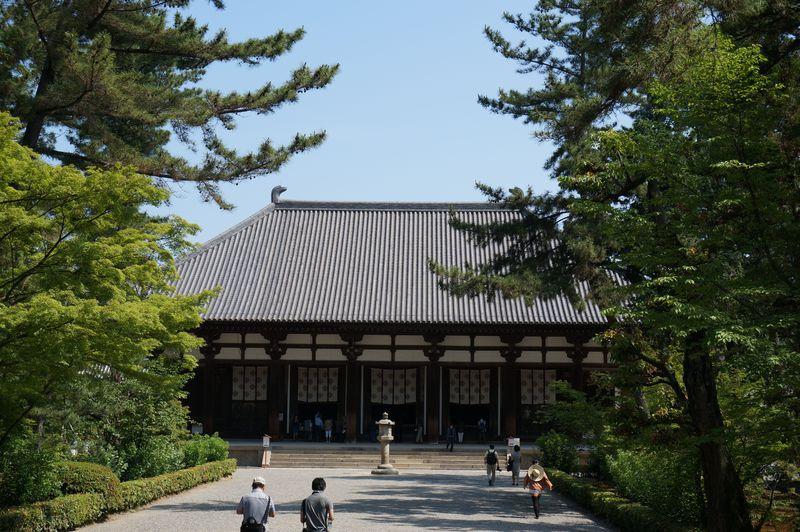 奈良・唐招提寺の天平の甍(いらか)は、鑑真和上の不屈の精神を今も伝え続けている