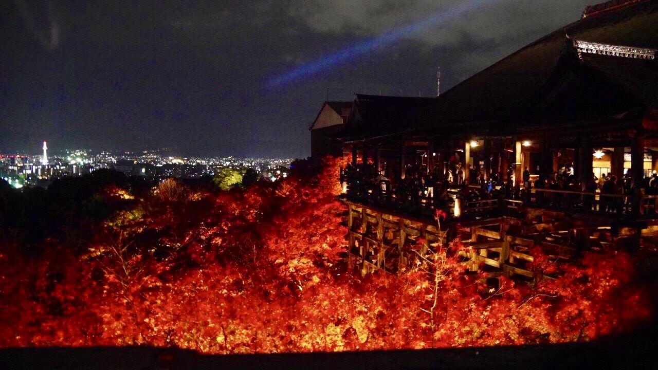 1日目夜:特別公開ライトアップ!王道の外せない高台寺・清水寺へ
