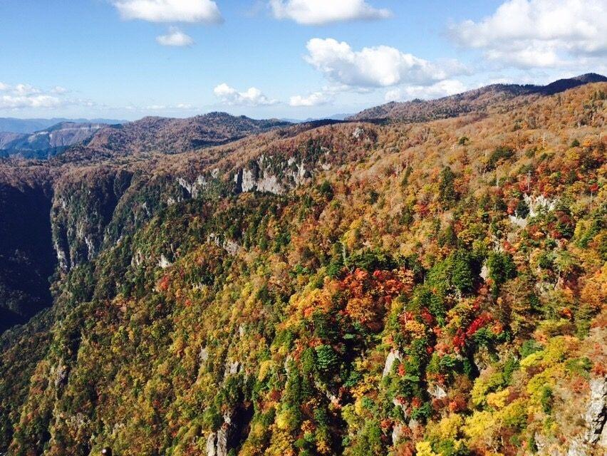 日本屈指の秘境!景色を楽しみながら紅葉満喫登山大台ケ原へ!