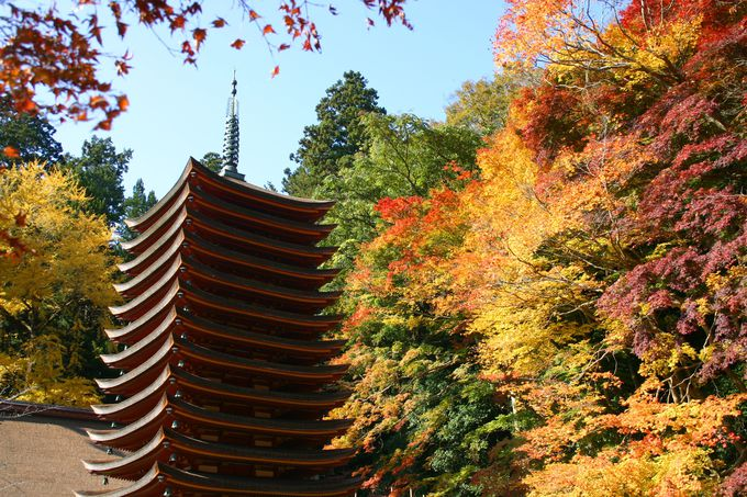 知る人ぞ知る紅葉の名所、談山神社!