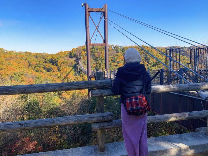 心も体もリフレッシュ!今秋は「ほしだ園地」で絶景紅葉ハイキング