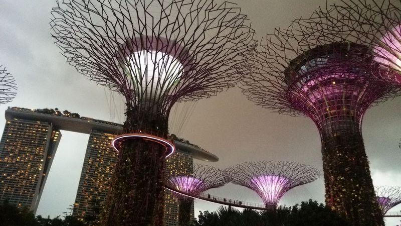 初めてのシンガポール!3泊4日ぐるっと観光モデルコース