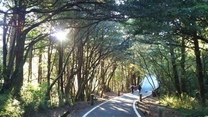ご来光の後はゆっくりと「小笠原山観景台」へ