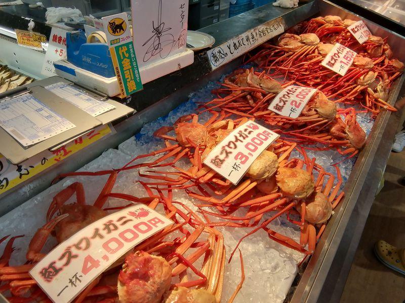 紅ズワイガニの旬は9〜12月!富山「新湊きっときと市場」