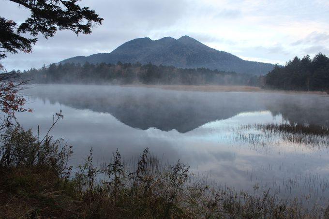 2日目 7:00 朝霧の尾瀬沼・大江湿原を楽しむ