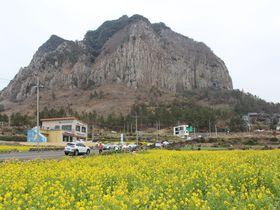 済州島・山房山「山房窟寺」火山が作ったジオパークに伝説の薬水が!
