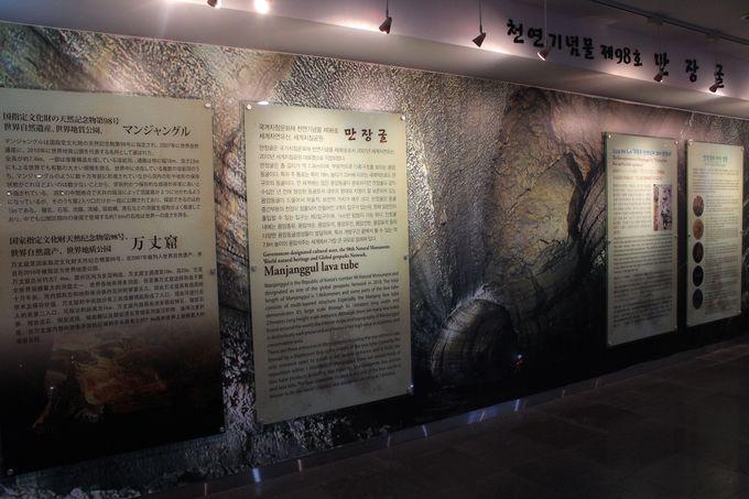 博物館で溶岩トンネルの知識をつけよう