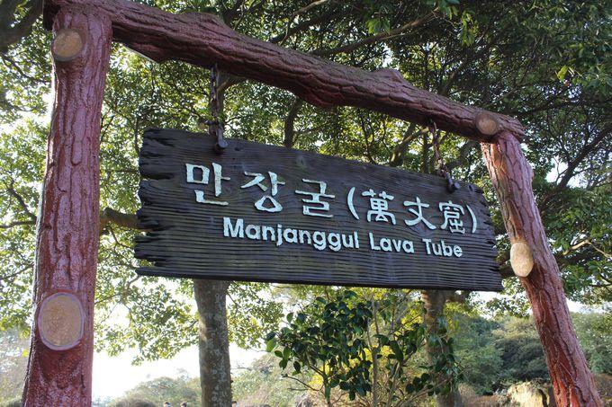 韓国唯一の世界自然遺産「万丈窟」