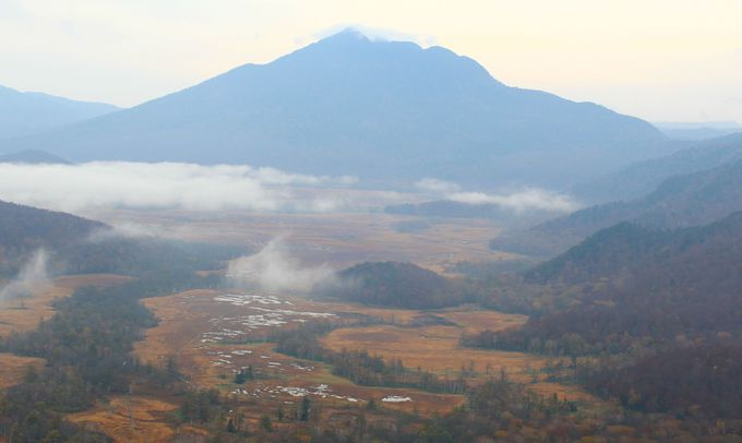 3日目 早朝 至仏山登山もしくは研究見本園散策