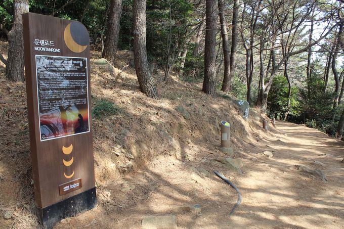 森側の散策路からも眺められる廃線跡