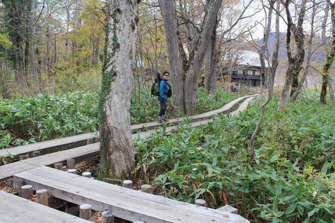 尾瀬ヶ原の四季をスライドショーと木道散策で楽しむ!