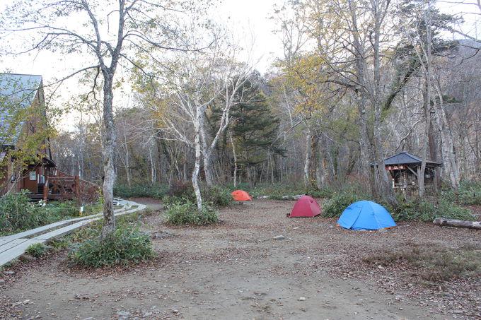 隣接するキャンプ場もキャンパー御用達!