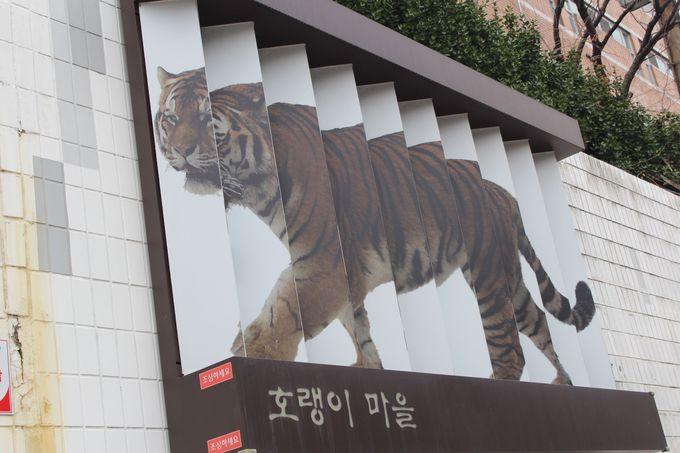 3.「韓国のシャウエン」青一色の山林隣接地域は安昌村