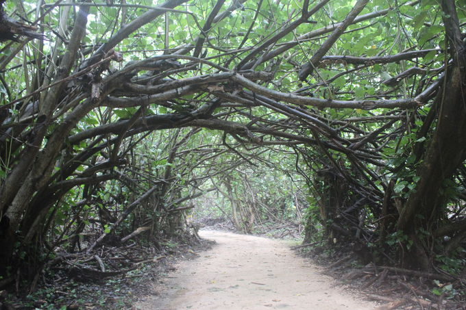 ナパリ海岸州立公園の入り口「ケウ・ビーチ(Ke'e Beach)」