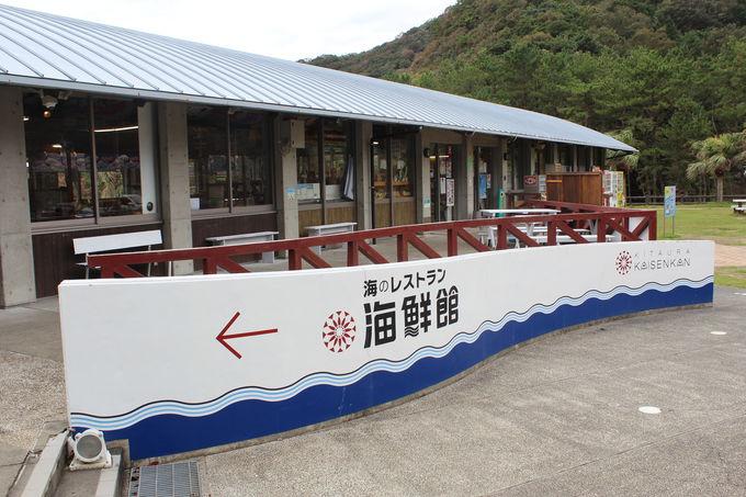 周辺でも海鮮モノのお土産や昼食などが充実!