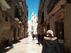 伊「アルタムーラ」パンの街を食べ尽くす!半日観光モデルコース