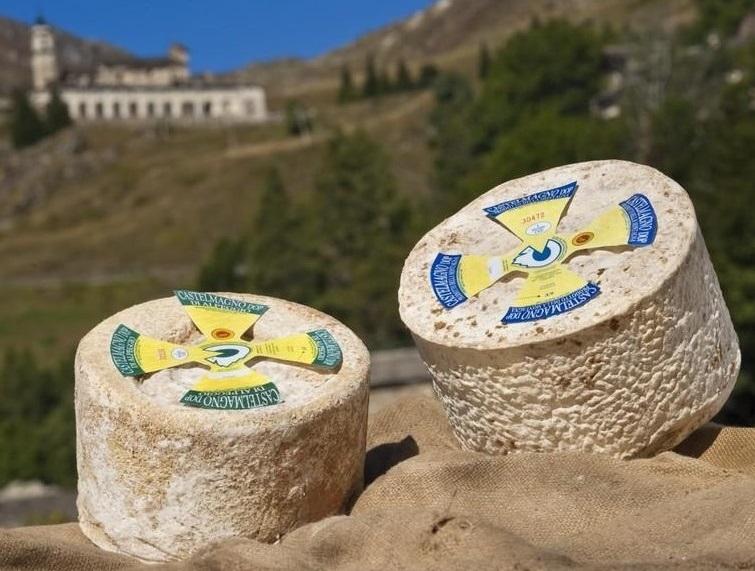 まぼろしの山のチーズ