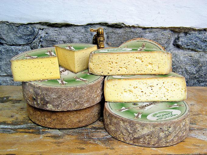 スイスの技術を融合したチーズ