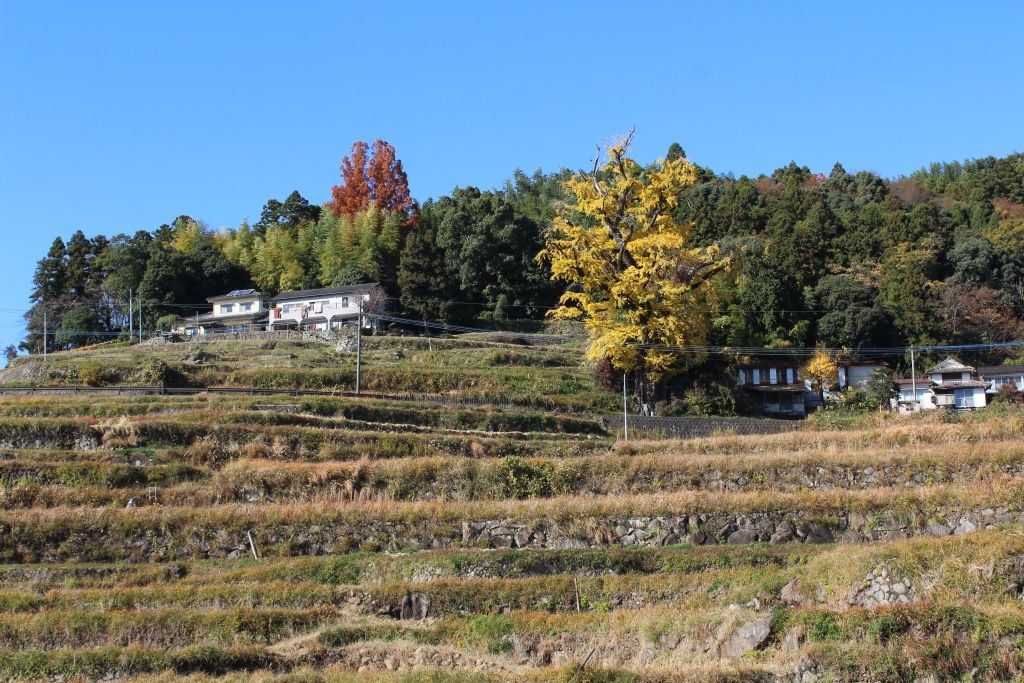 深まる秋とともにふくらむ風景の楽しみ