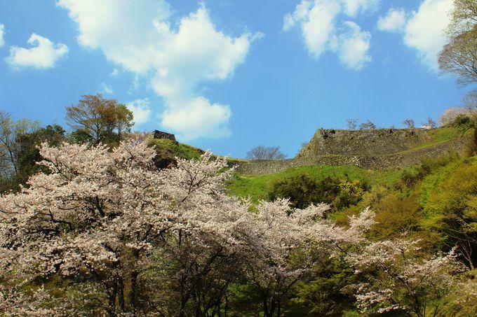 四季が彩る風光明媚な奥豊後の景観にうっとり