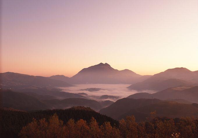 由布院といえば朝霧!幻想的な風景はココから