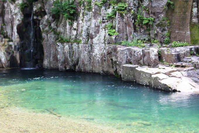 清流奥岳川の美しさとヒンヤリ感を味わう