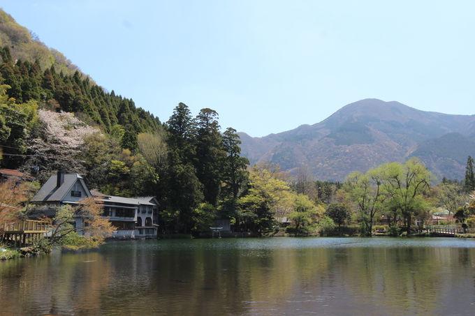 のどかな田園風景から神秘の湖「金鱗湖」へ