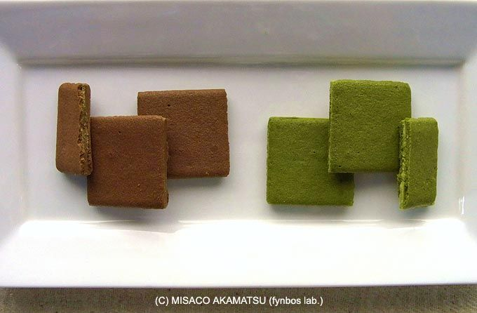 白に朱と緑が映える箱、「茶一葉」は八女茶使用の焼菓子
