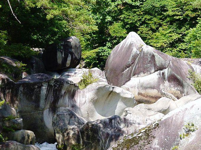 川で見つけよう! 動物や食材に見立てた奇岩に奇石