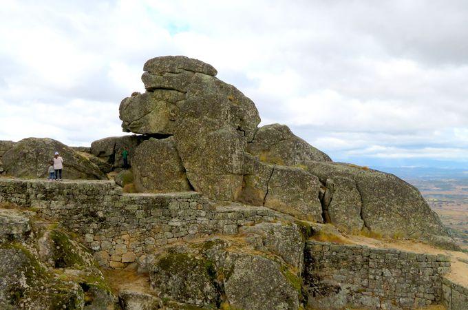 お城もやっぱり石との共存