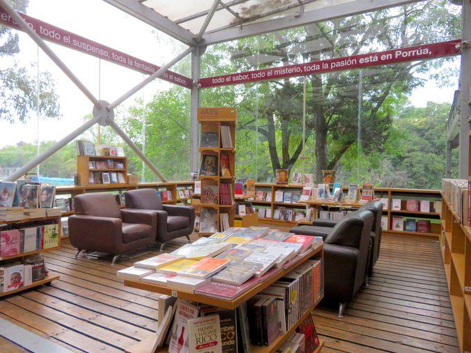 湖を眺めながら楽しめる「ポルーア チャプルテペック店」